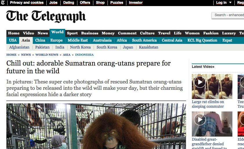 The Telegraph10.7.2015